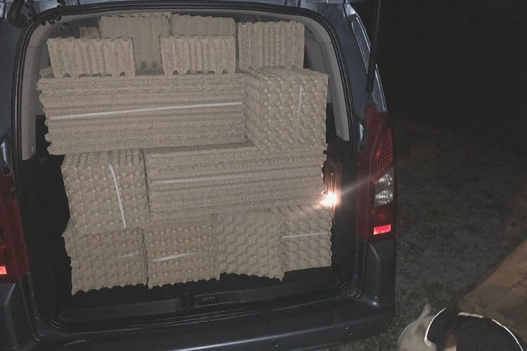 a car full of paper egg trays for crickets